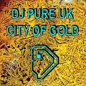 DJ Pure UK 歌手頭像