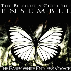 The Butterfly Chillout Ensemble 歌手頭像