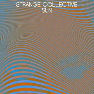 Strange Collective 歌手頭像