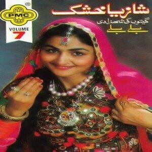 Shazia Khushk 歌手頭像