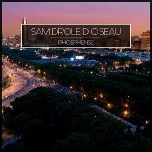 Sam Drole D Oiseau 歌手頭像