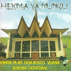 Kwaya Ya Mt. Don Bosco Vijana Bukoba Cathedral 歌手頭像