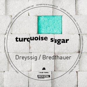 Dreyssig & Bredthauer 歌手頭像