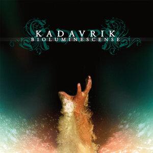 KADAVRIK 歌手頭像