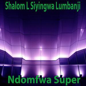 Shalomel L Siyingwa Lumbanji 歌手頭像