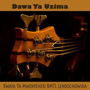 Kwaya Ya Mwenyeheri BMTL Lendochowska 歌手頭像
