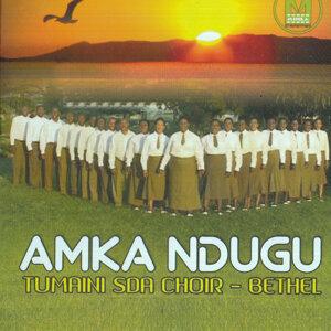 Tumaini SDA Choir Bethel 歌手頭像