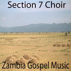 Section 7 Choir 歌手頭像