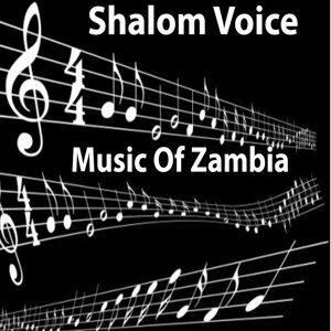 Shalom Voices 歌手頭像