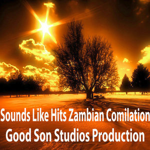 Sounds Like Hits Zambian Comilation 歌手頭像