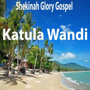 Shekinah Glory Gospel 歌手頭像