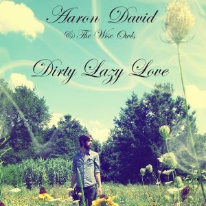 Aaron David & the Wise Owls 歌手頭像