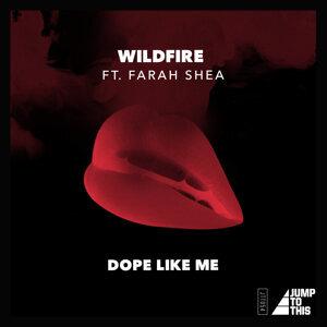 Wildfire 歌手頭像