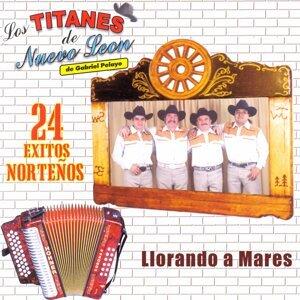 Los Titanes De Nuevo León De Gabriel Pelayo 歌手頭像