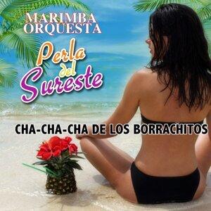 Marimba Orquestra Perla Del Sureste 歌手頭像