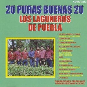 Los Laguneros de Puebla 歌手頭像