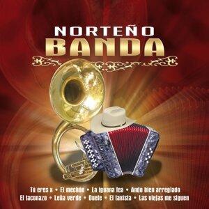 La Valentia, Faraones del Norte, Banda Cuicanis 歌手頭像