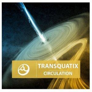 Transquatix 歌手頭像