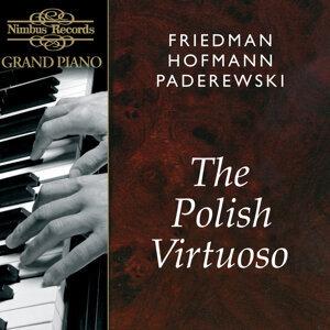 Ignaz Friedman, Josef Hofmann, Ignacy Jan Paderewski 歌手頭像