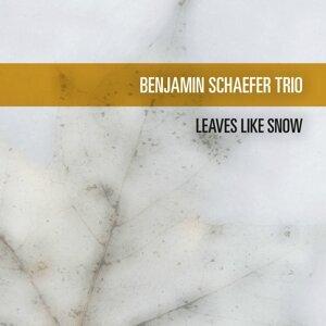 Benjamin Schaefer Trio