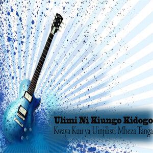 Kwaya Kuu ya Uinjilisti Mheza Tanga 歌手頭像