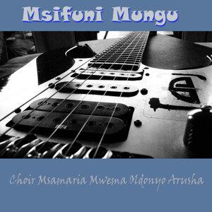 Choir Msamaria Mwema Oldonyo Arusha 歌手頭像