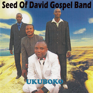 Seed Of David Gospel Band 歌手頭像