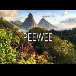PeeWee 歌手頭像