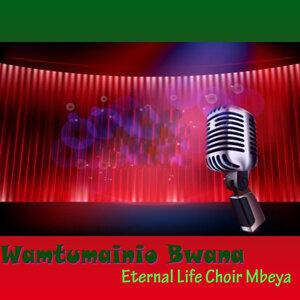 Eternal Life Choir Mbeya 歌手頭像