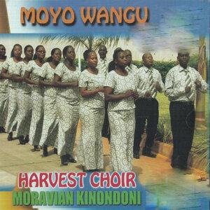 Harvest Choir Moravian Kinondoni 歌手頭像