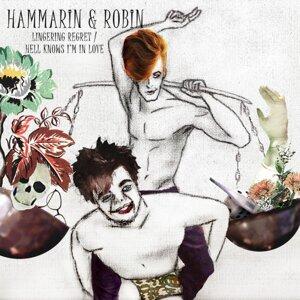 Hammarin & Robin 歌手頭像