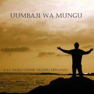 A.I.C Injili Choir Ngudu Mwanza 歌手頭像