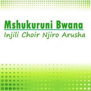 Injili Choir Njiro Arusha 歌手頭像