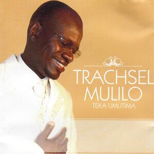 Trachsel Mulilo 歌手頭像