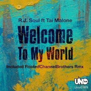 R. J. Soul 歌手頭像