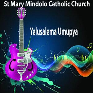 St Mary Mindolo Catholic Church 歌手頭像