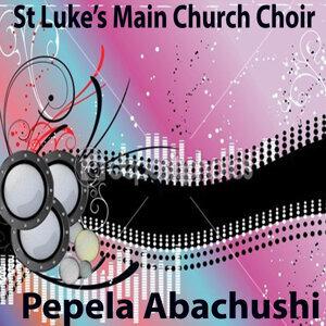 St Luke's Main Church Choir 歌手頭像
