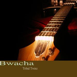 Tribal Twinz 歌手頭像