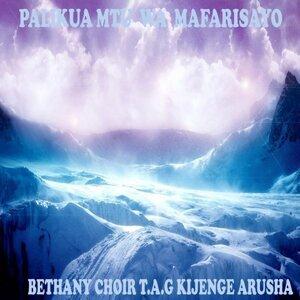 Bethany Choir T.A.G Kijenge Arusha 歌手頭像