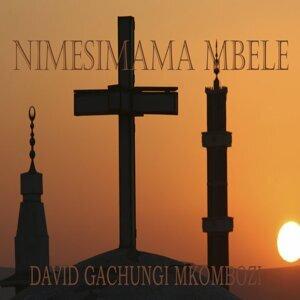 David Gachungi Mkombozi 歌手頭像