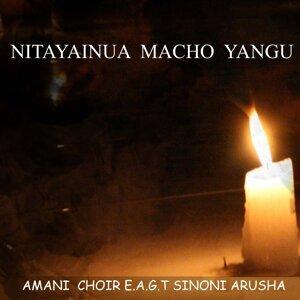 Amani Choir EAGT Sinoni Arusha 歌手頭像