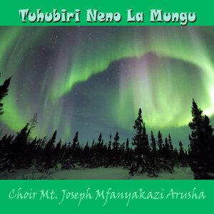Choir Mt. Joseph Mfanyakazi Arusha 歌手頭像