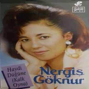 Nergis Göknur 歌手頭像
