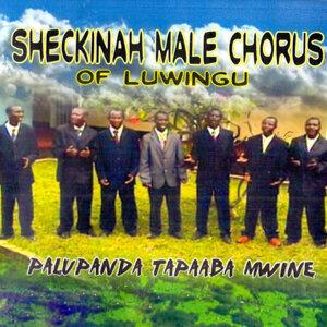 Sheckinah Male Chorus Of Luwingu 歌手頭像