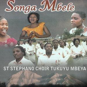 St Stephano Choir Tukuyu Mbeya 歌手頭像