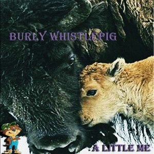 Burly Whistlepig 歌手頭像