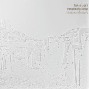 Lukas Ligeti, Thollem Mcdonas 歌手頭像