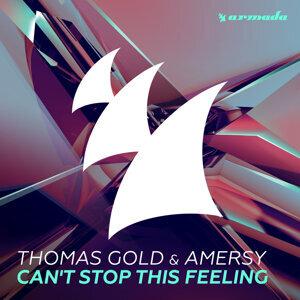 Thomas Gold, Amersy 歌手頭像