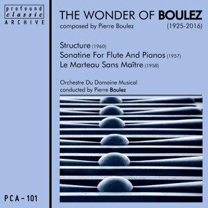 Pierre Boulez, Soloists & Domaine Musical Ensemble 歌手頭像