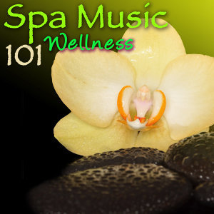 Spa & Meditation Relax Club & Pure Massage Music 歌手頭像